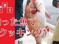 釣った真鯛を刺し身にする男料理