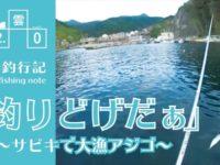 三浦(三津)漁港でエギング&サビキ!